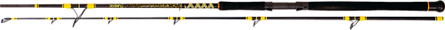 Black Cat Passion Pro DX Boat Spin, 2,40m WG 50-190g